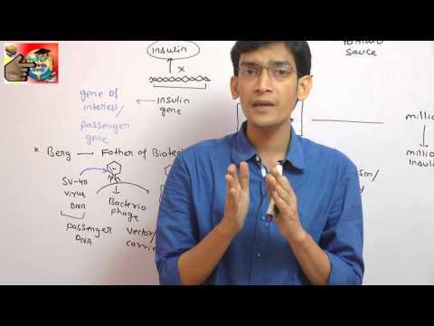 Principles of Biotechnology demo