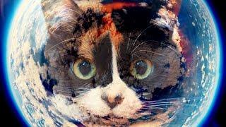 Как сделать фото земли из космоса