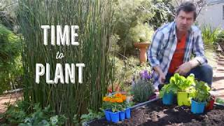 Grow It Local - with Baileys!