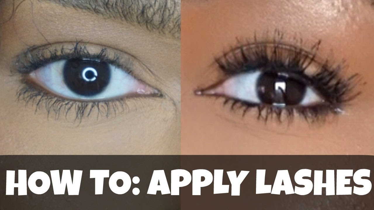 How To Apply False Lashes On Curly Lashes Beginner Friendly Quick