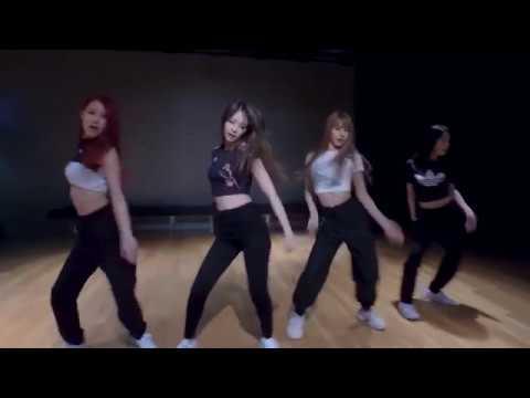 [mirrored] BLACKPINK - DDU-DU DDU-DU Dance Practice Video