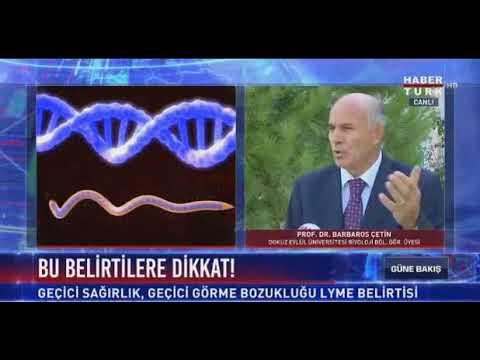 Prof.Dr. Barbaros Çetin - Lyme Hastalığı