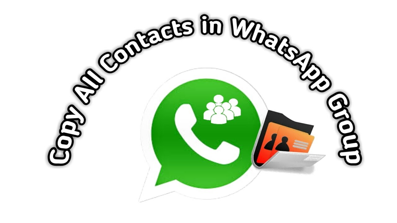 How To Copy All Contacts From Whatsapp Group