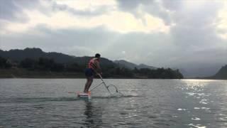 Water bird   Oxalis Adventure - Phong Nha Ke Bang