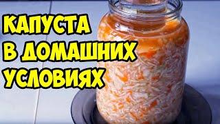 Как квасить капусту в домашних условиях. Простой рецепт вкусной соленой капусты(Сегодня мы готовим квашеную капусту быстро приготовления в банке без рассола. Нам всего навсего понадобитс..., 2015-01-20T19:45:24.000Z)