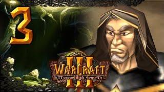 #3 ВИДЕНИЕ ПРОШЛОГО [Покинутый остров] - Warcraft 3 Последний Друид прохождение