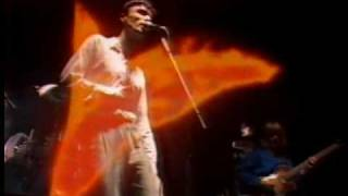 Talking Heads Live Wembley 1982 (10-11) Swamp