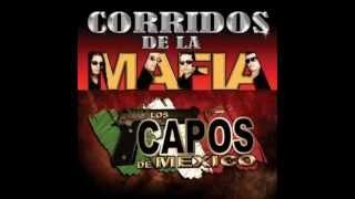 los capos de mexico mixvariasmuy bueno