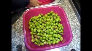 Как я заготавливаю оливки на целый год  Соленые оливки  Закупорки