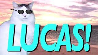 HAPPY BIRTHDAY LUCAS! - EPIC CAT Happy Birthday Song