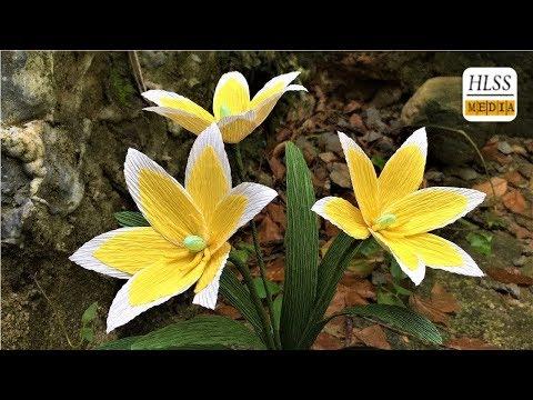 Com fer tulipa tarda paper flor fàcil| Diy tulipa tarda amb paper de flors a fer tutorials