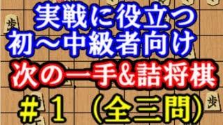 【#1】初心者~中級者向け次の一手&詰将棋 全三問