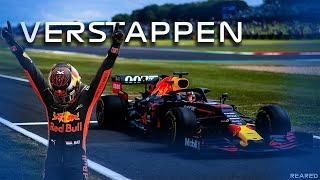 Max Verstappen Season Highlights 2019