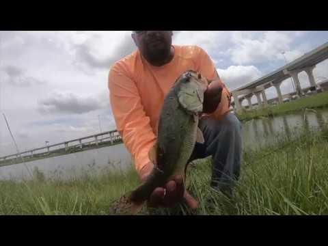 Pond Hopping Houston Texas