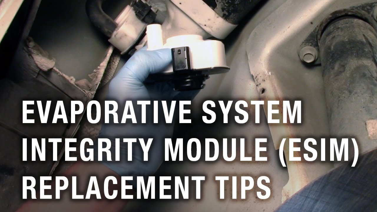Evaporative System Integrity Module Esim Replacement