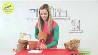 Make Your Own Ladybird House