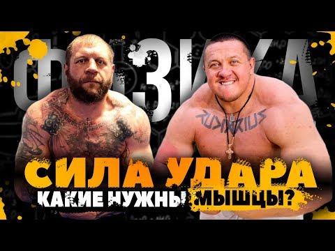 СИЛА МЫШЦ и СИЛА УДАРА / Кокляев бой с Емельяненко
