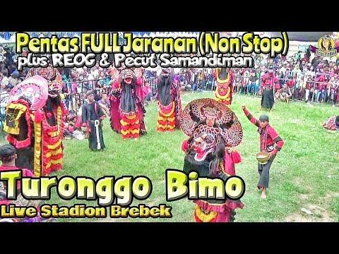 Pentas Semarak Jaranan Turonggo Bimo---Full Jaranan (Non Stop) Plus REOG & Pecut Samandiman