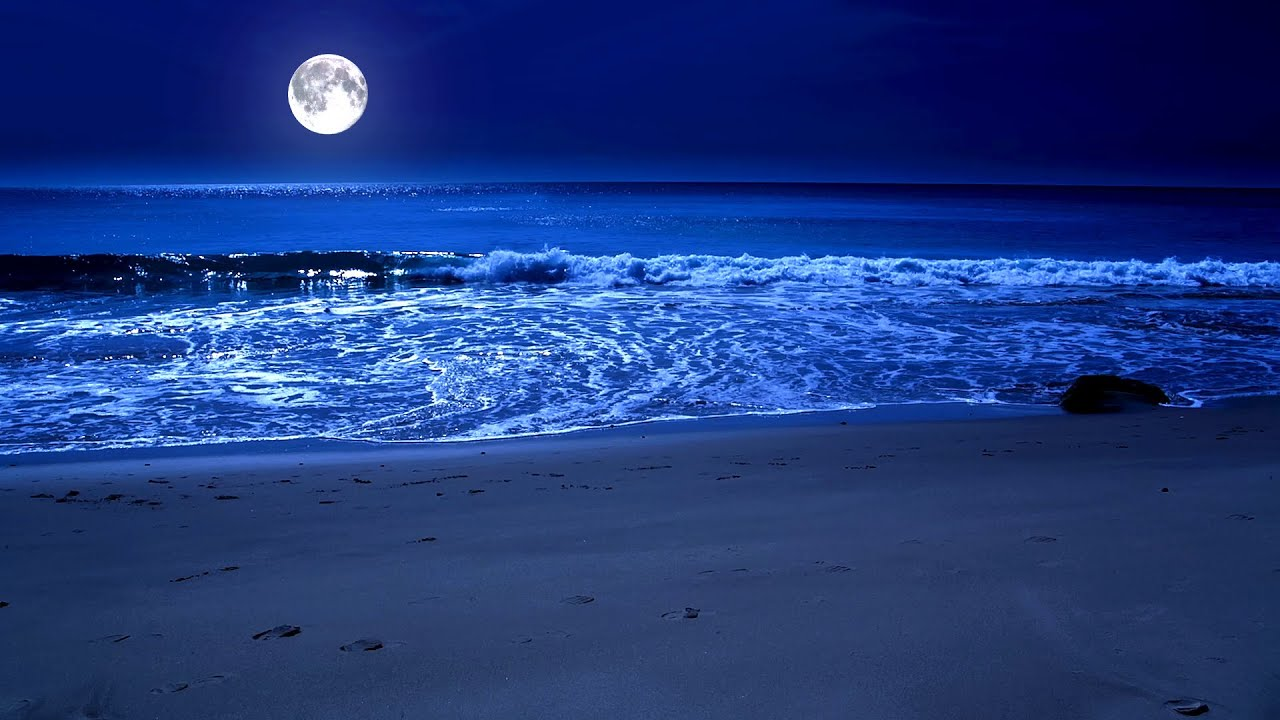 Sleep By The Sea All Night With The Full Moon And Relaxing Sparkling Waves  on Zavival Beach, 11 Hrs - YouTube