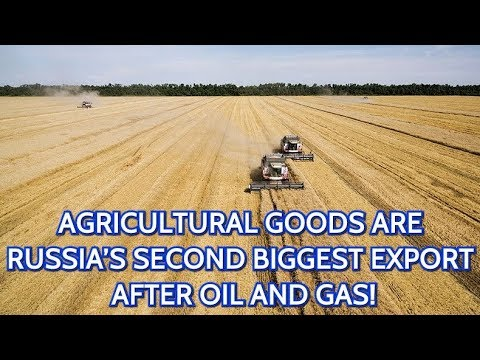 Russian Agriculture Export Booming! Russia Exported 26 BILLION Dollars Of Agricultural Products