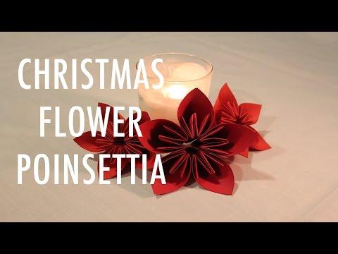 DIY CHRISTMAS/HOLIDAY FLOWER: POINSETTIA