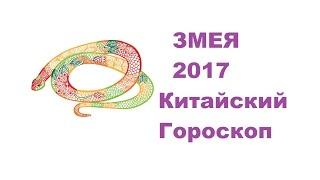 Гороскоп Змея -2017. Астротиполог, Нумеролог - Дмитрий Шимко