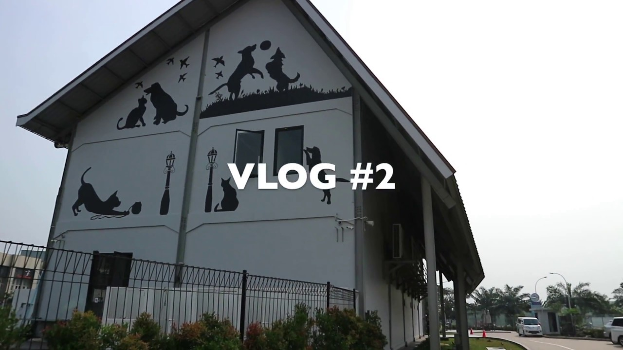 VLOG #2: PET KINGDOM
