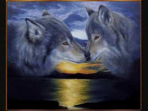 Les indien et loup youtube - Cuisiner vesse de loup ...