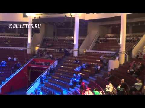 Цирк Никулина на Цветном Бульваре, зрительный зал
