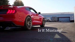 2018 Mustang GT vs 2018 Hellcat Challenger || Exhaust Sound Comparison