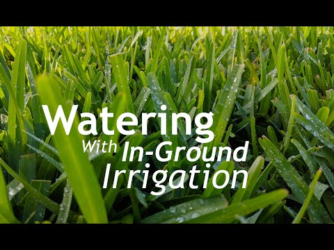 How To Water With In Ground Sprinklers | #TunaCanChallenge