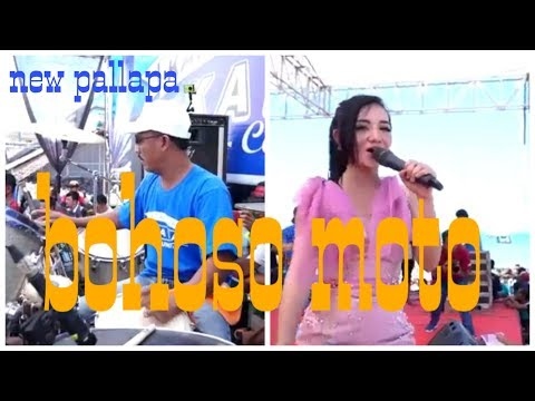 Download Lagu Dangdut Terbaru 2018 Mp3 New Pallapa