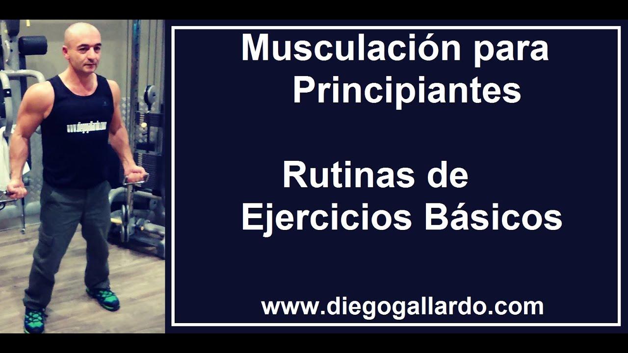 dieta para aumentar masa muscular principiantes