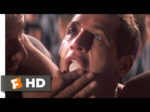Cool Hand Luke (1967) - Eating the Eggs Scene (6/8) | Movieclips