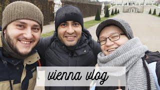 втроем в Вене: криминальный авторитет в хостеле за 66 евро