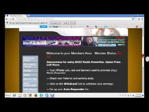 All about Buzz Media Network