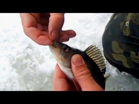 Зимняя рыбалка. Ловля Окуня на Мормышку. О Рыбалке Всерьез.