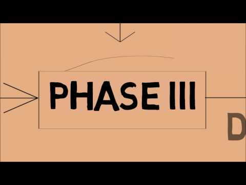 Phases of Drug Development (Pharmacy education)