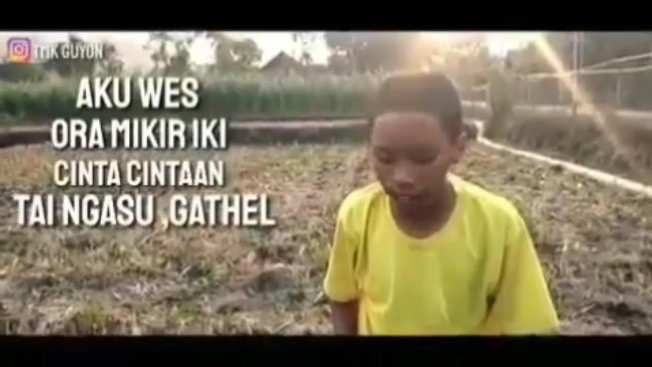Story Wa 30 Detik Lucu Terbaru Part10 Statuswa Storywa Youtube