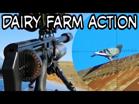 Dairy Farm Action - Airgun Pest Control