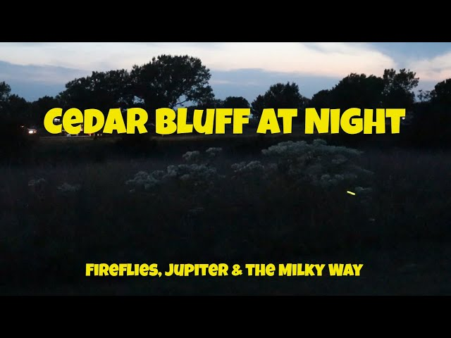 Cedar Bluff at Night - Fireflies, Jupiter & Milky Way