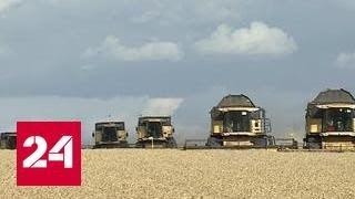 В Татарстане уборка урожая началась с опозданием