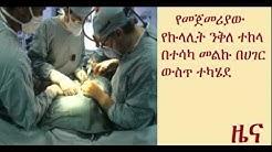 hqdefault - Ethiopian Kidney Transplant Centers