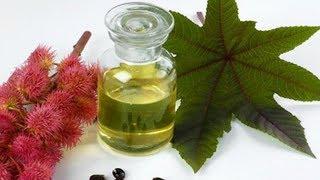 Идеальная МАСКА для ВОЛОС с  касторовым маслом - вернёт волосам природную силу и привлекательность!