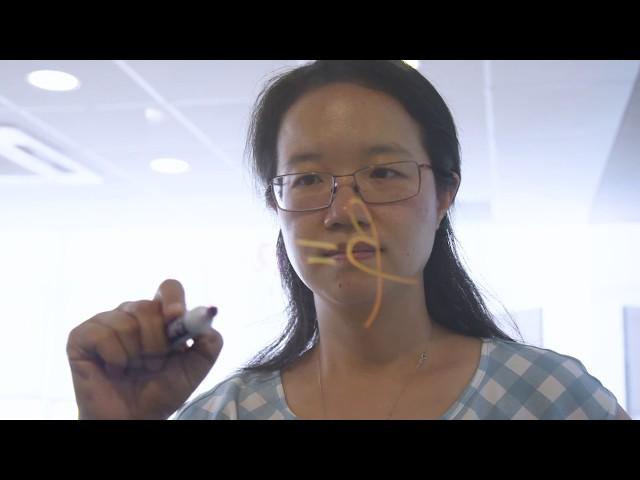 Faculty Spotlight: Pei Wang, PhD