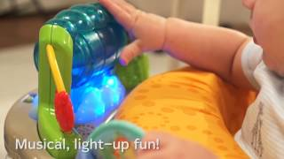 Fisher Price - Rainforest Friends Jumperoo