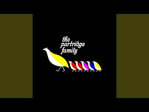 The Partridge Family Theme (Single)