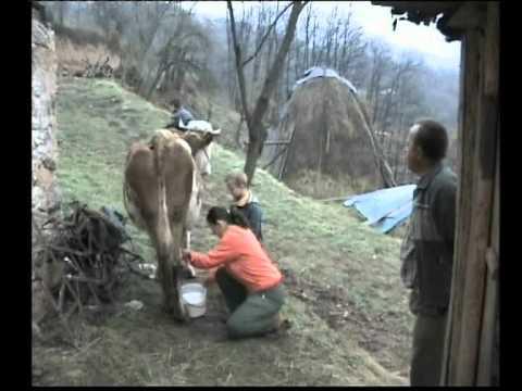 Hido Muratovic - Nova pomoc porodici Kolasinac 2011