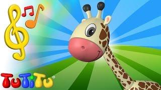 Piosenki po angielsku dla dzieci | Żyrafa | Nauka angielskiego dla dzieci