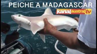 Voyage de Peche aux nord de MADAGASCAR by  KANAL AUSTRAL et PIMENT.TV